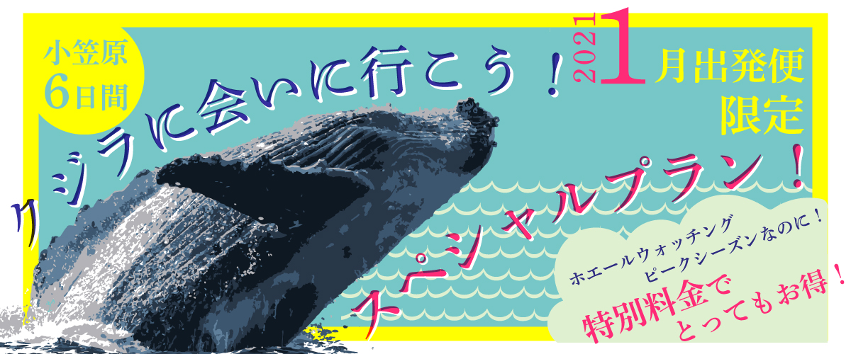 "<span class=""hpt_headertitle"">クジラに会いに行こう!1月出発限定スペシャルプラン</span>"