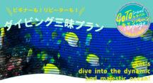 【GOTOトラベル対象商品】ダイビング三昧プラン