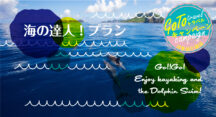 【GOTOトラベル対象商品】海の達人プラン